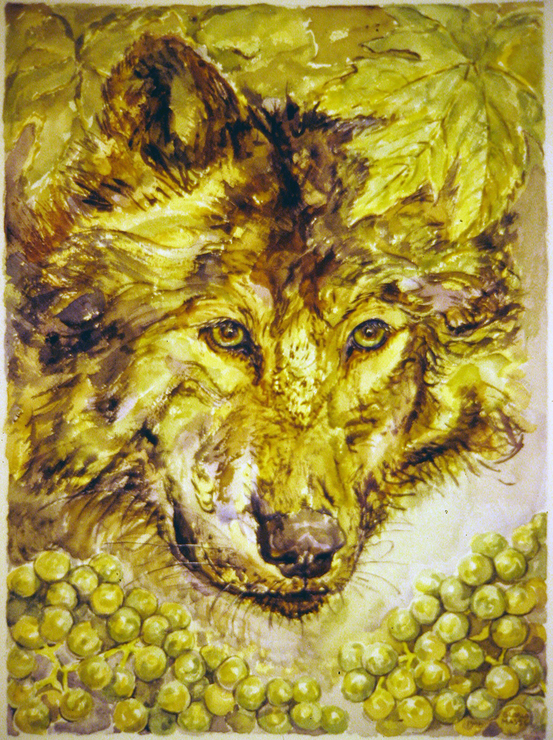 green grapes wolves of vineyard series 1996 watercolour 15x11