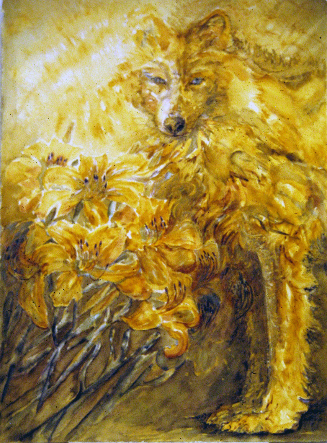 sun wolf 1995 watercolour 30x22