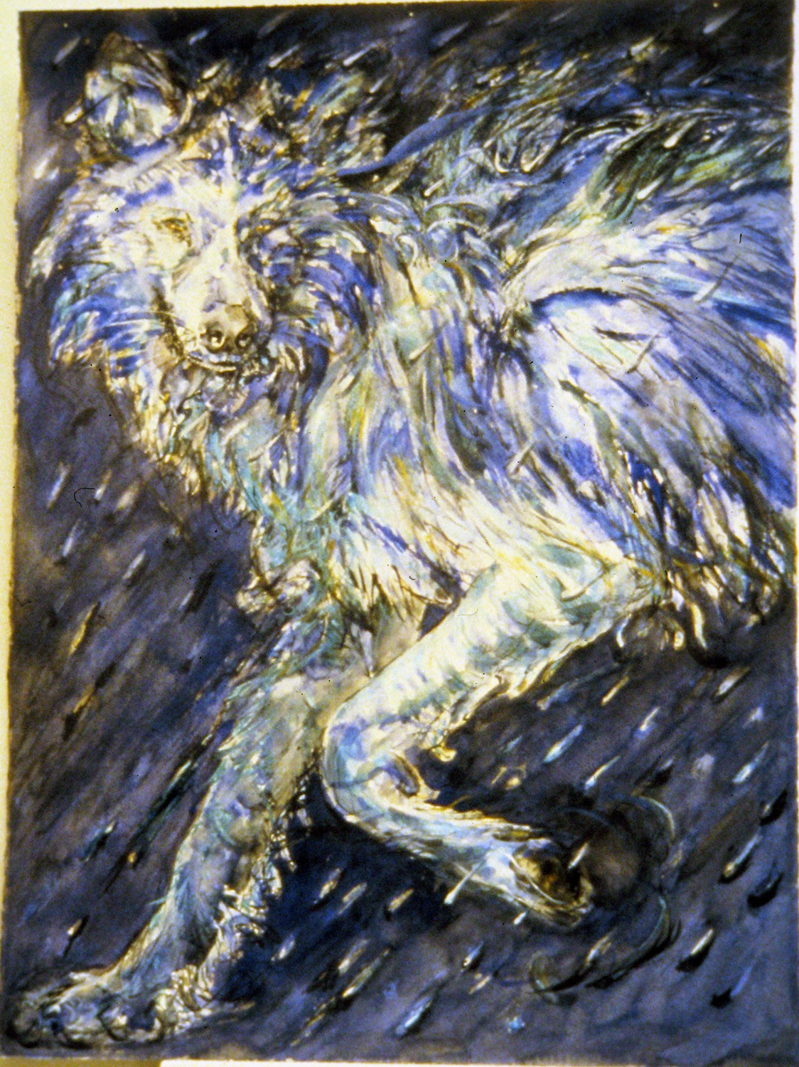 rain wolf 1995 watercolour 30x22