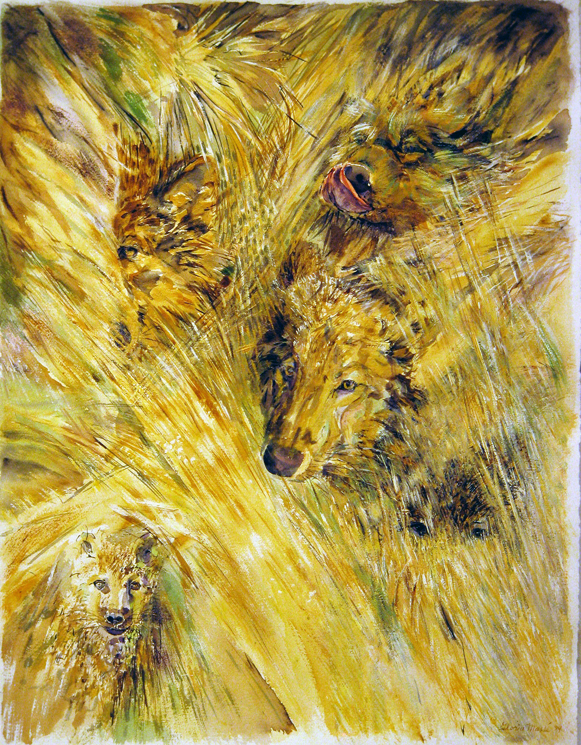 wolves in grass 1994 watercolours 28x38