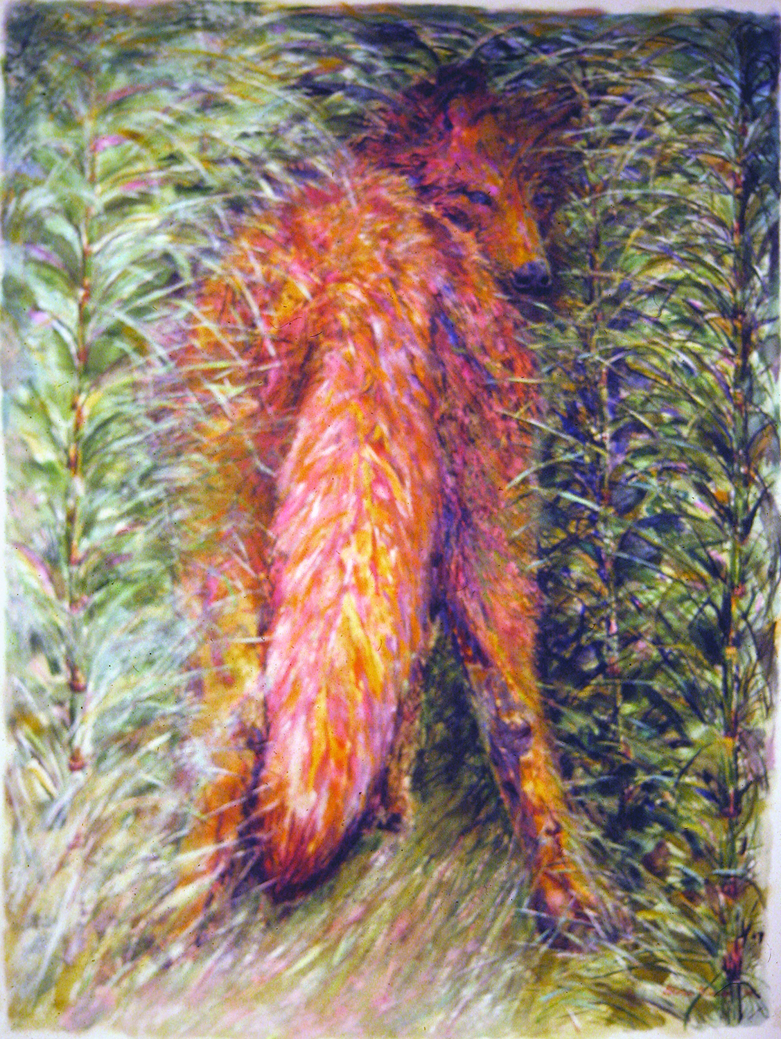 wolf in horsetails 1994 watercolour 28x38