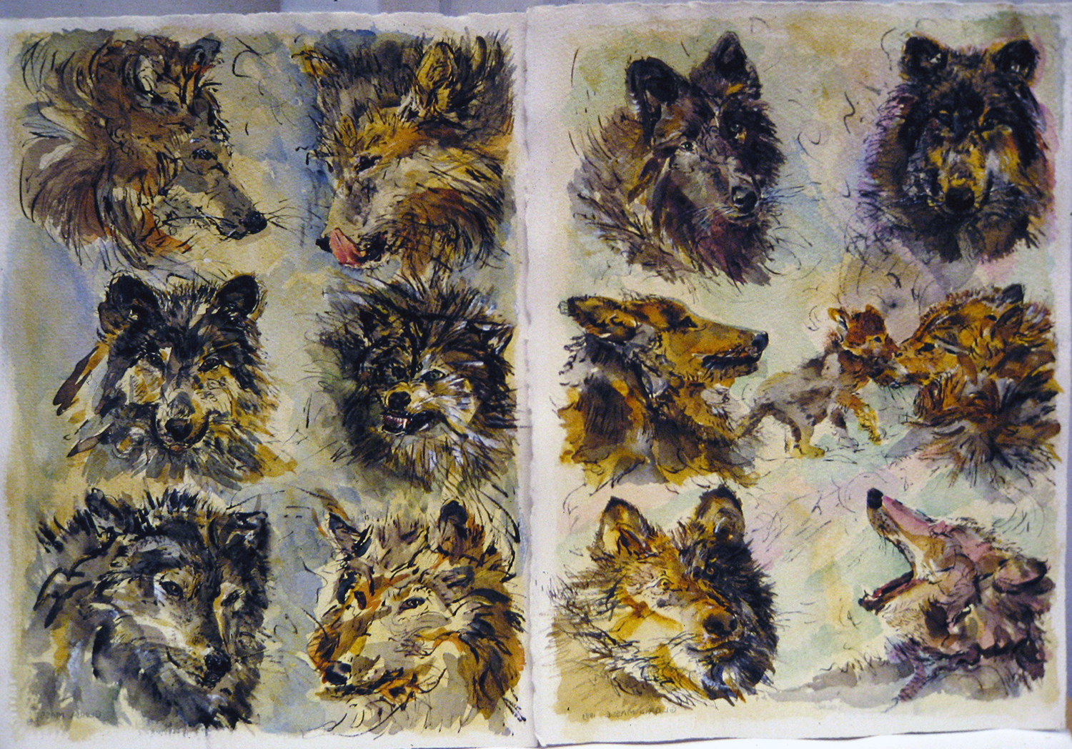 six wolves one snarling 1993 15x11