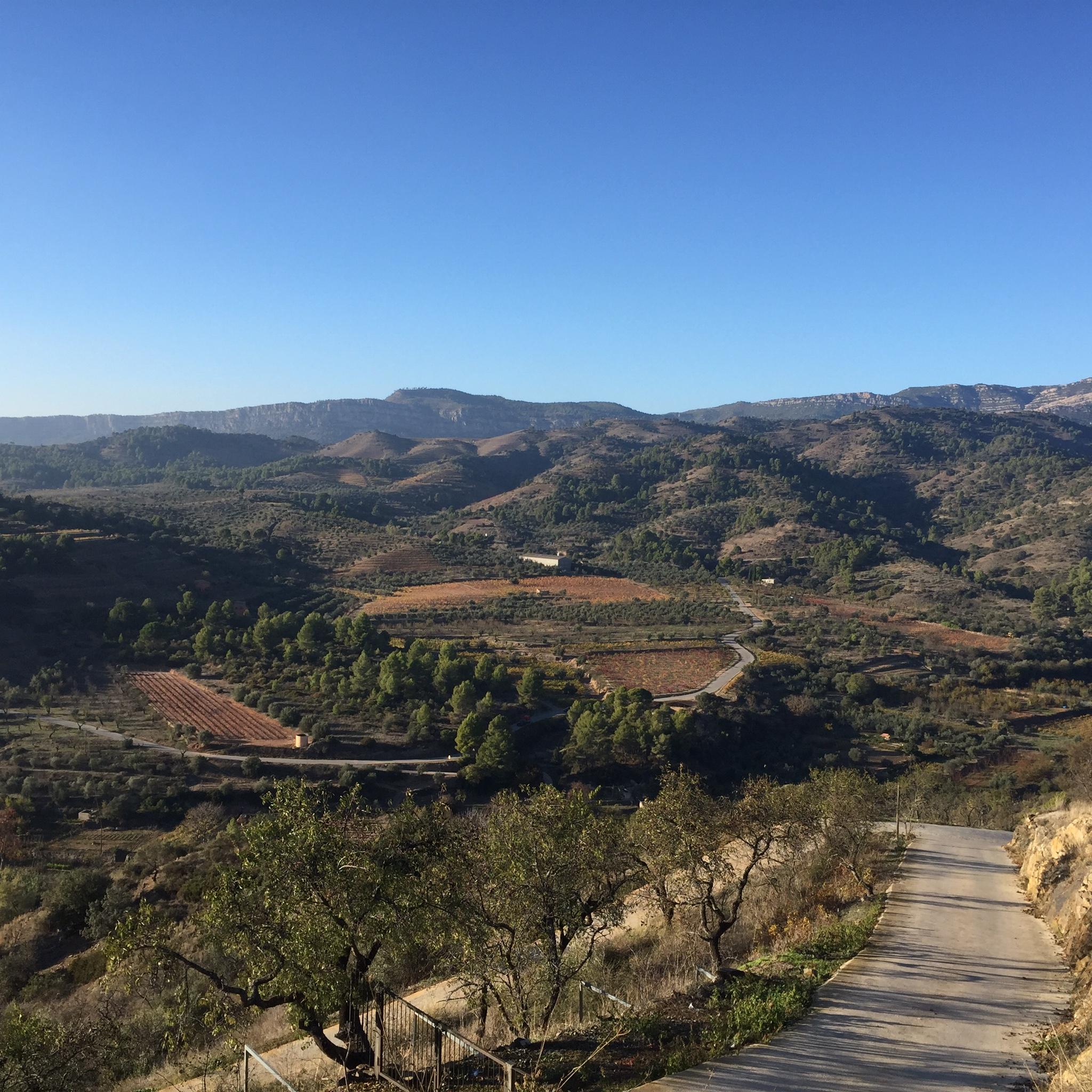 Priorat landscape