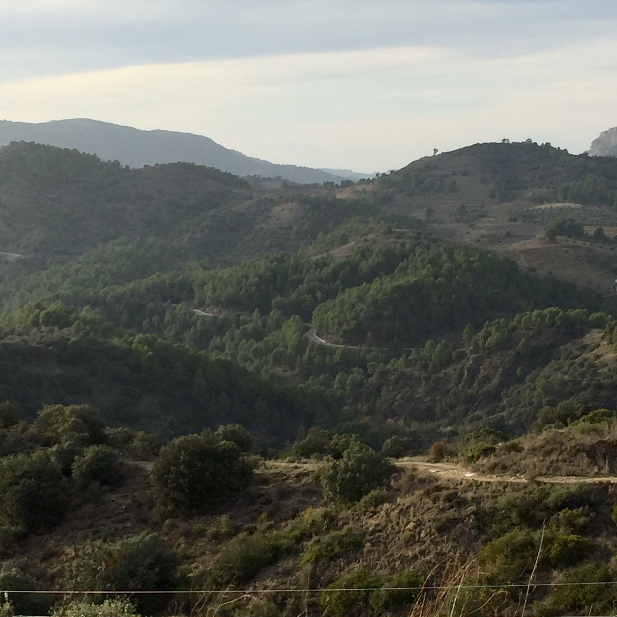 Winding roads in Priorat