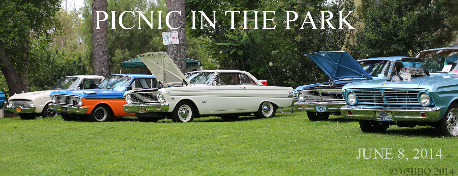 Falcons and Rancheros line the hillside at Picnic in the Park, Burbank June 8, 2014
