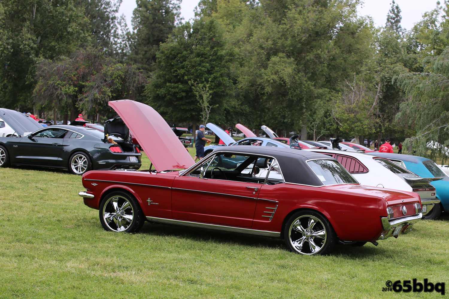 warners-2016-car-show-mustang-1245.jpg