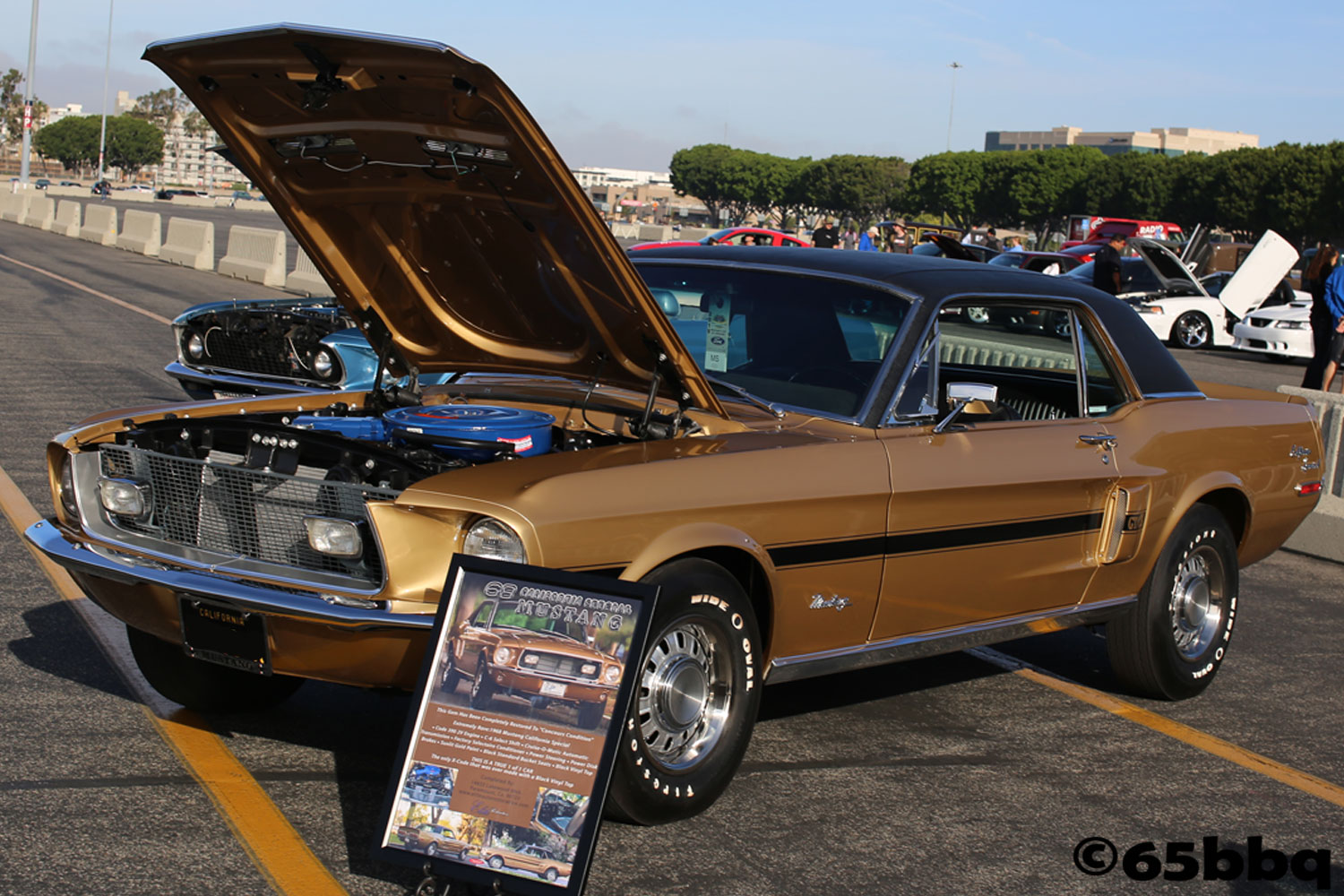 fabulous-fords-forever-april-2019-65bbqmmu-44.jpg