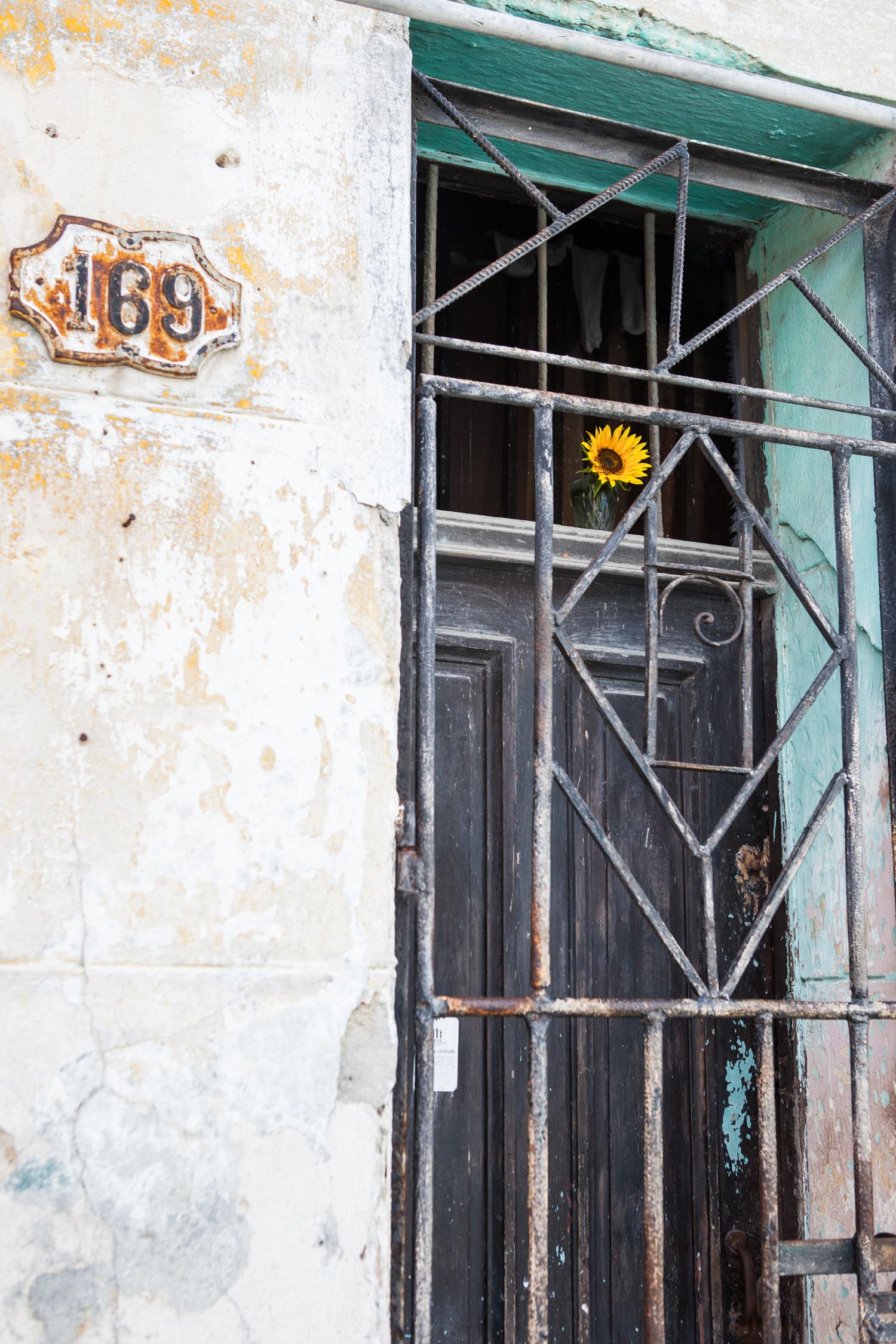 Cuba_2017-11-11-8542.jpg