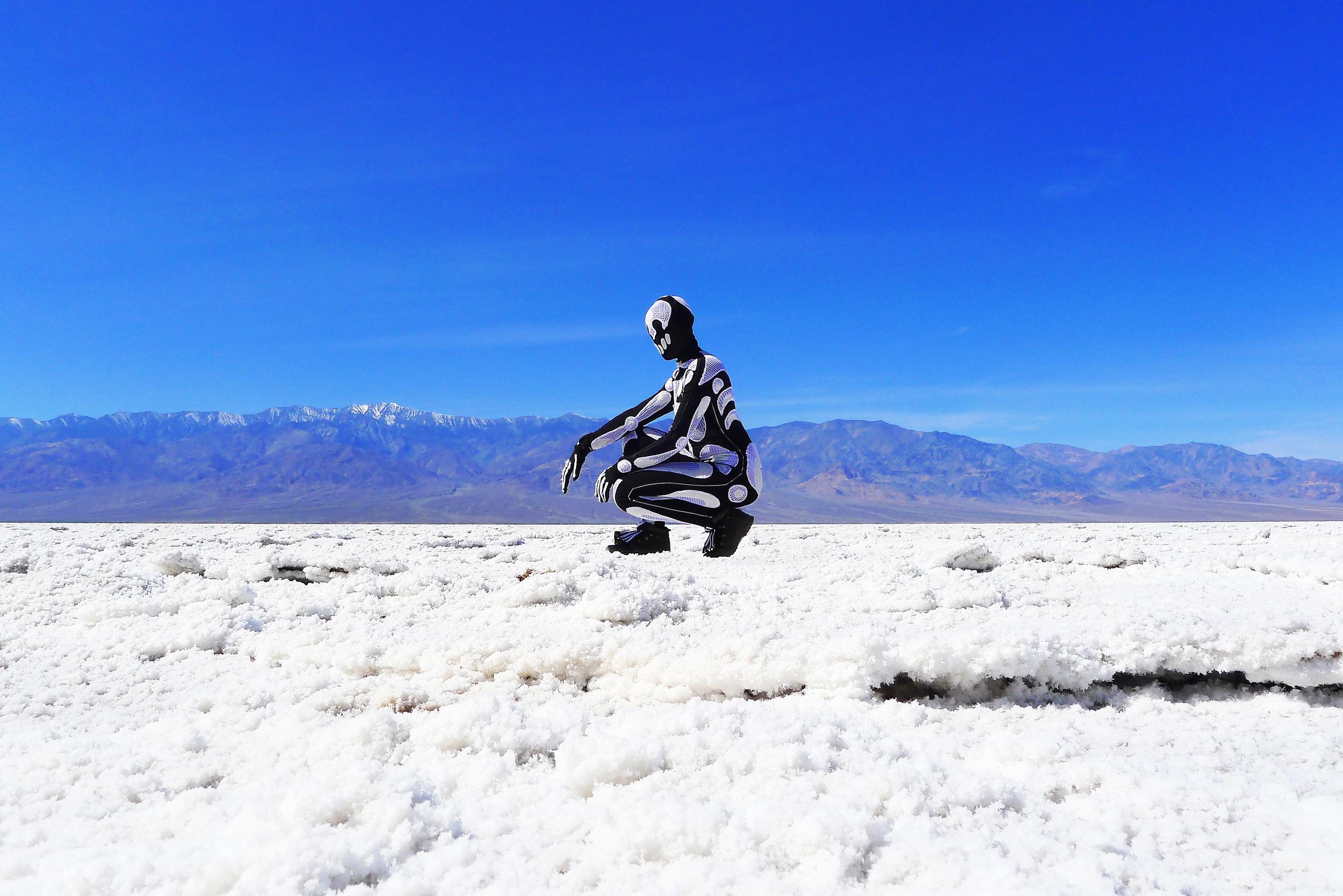 DV_Skeleton_Saltflats_02_med.jpg