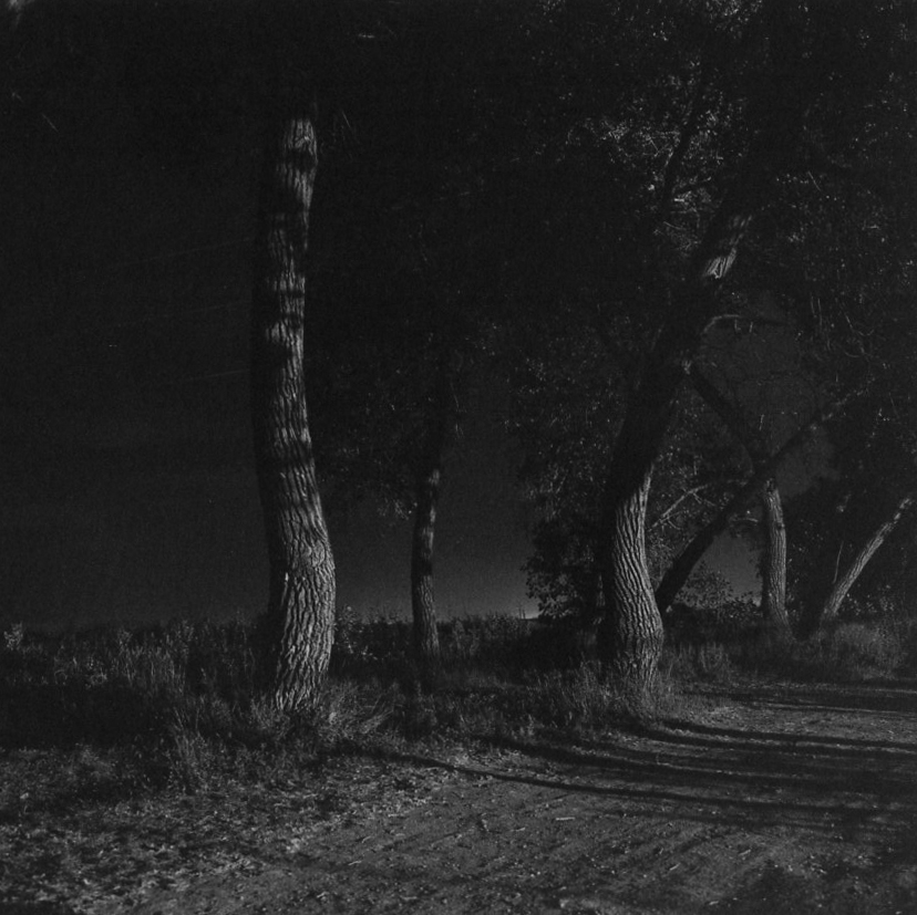 from  Summer Nights Walking  , 1976-1982 @ Robert Adams