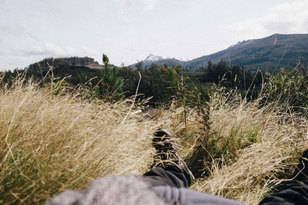 20150906_TasmaniaRoadtrip_124833-Nick-Bedford,-Photographer-Australia,+Leica+M+Typ+240,+Mount+Field+National+Park,+Road+Trip,+Summarit+35mm,+Tasmania,+Travel,+VSCO+Film.jpg