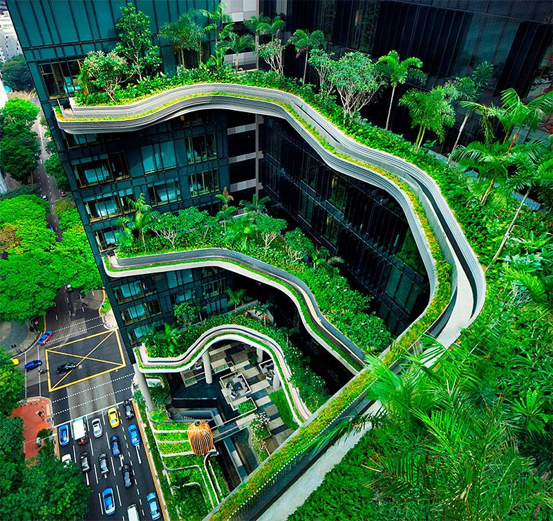 PARKROYAL-Sky-Gardens-Bingham-Hall-800.jpg