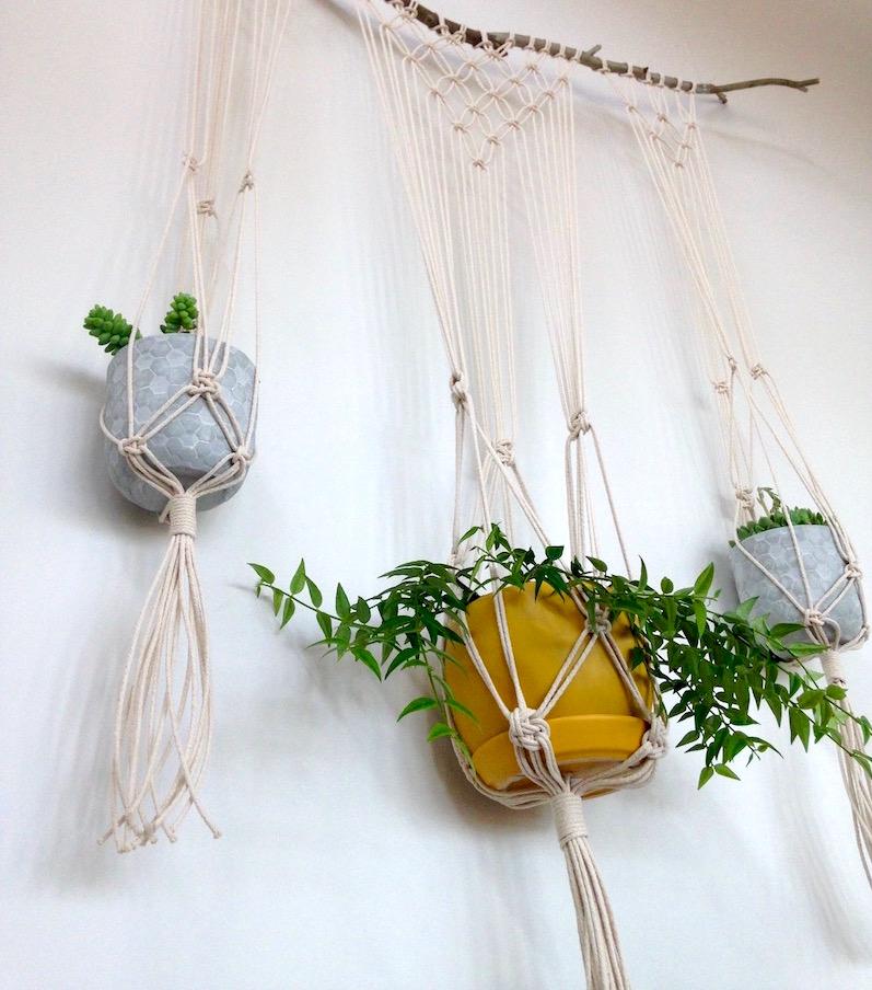 Modern Macrame Plant Hanger / Wall Hanging