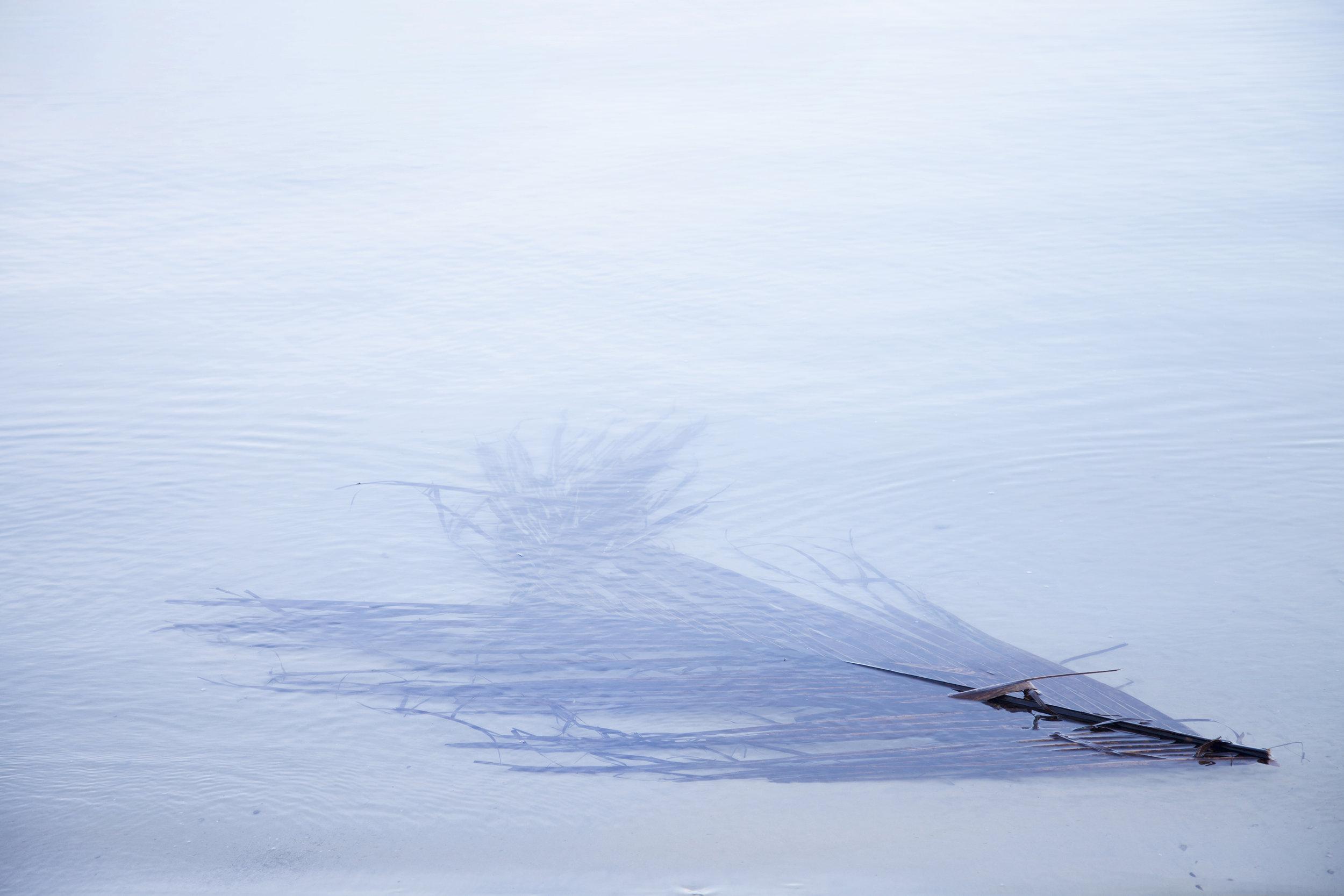 Searching for paradise - Sylvana Lansu (1).jpg