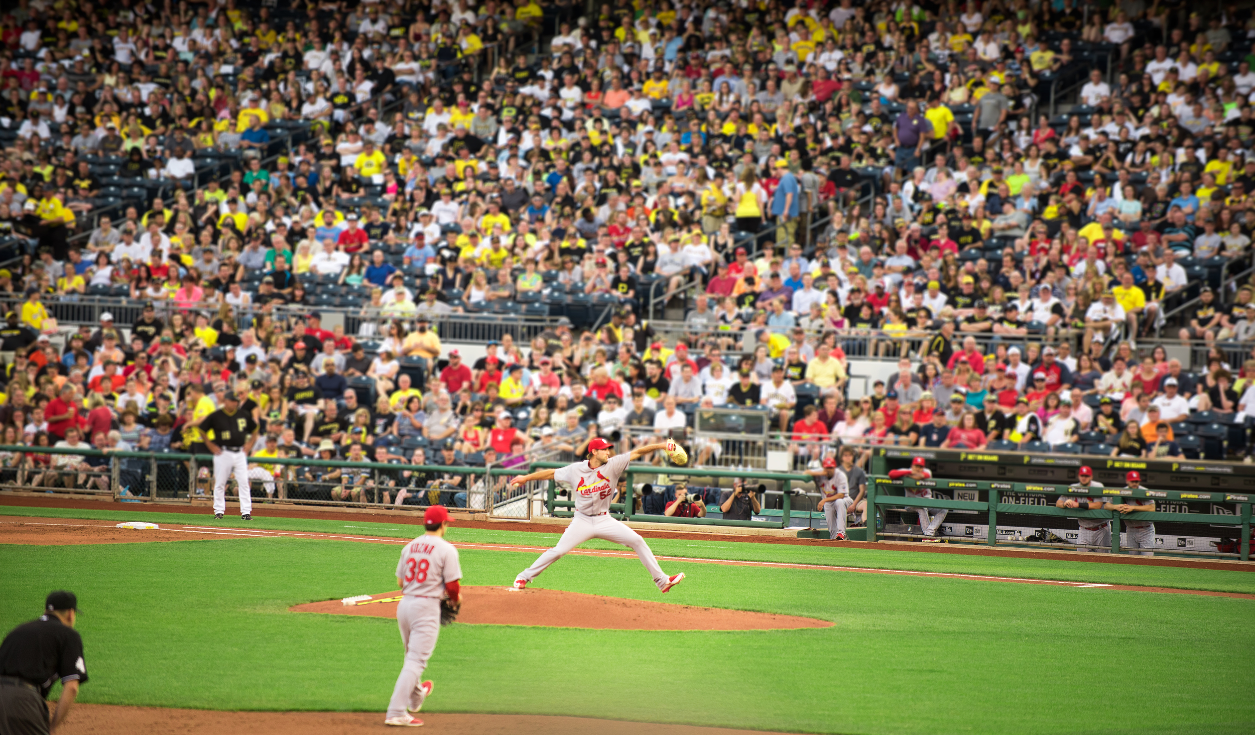 Cardinals in PNC PARK - Pittsburgh