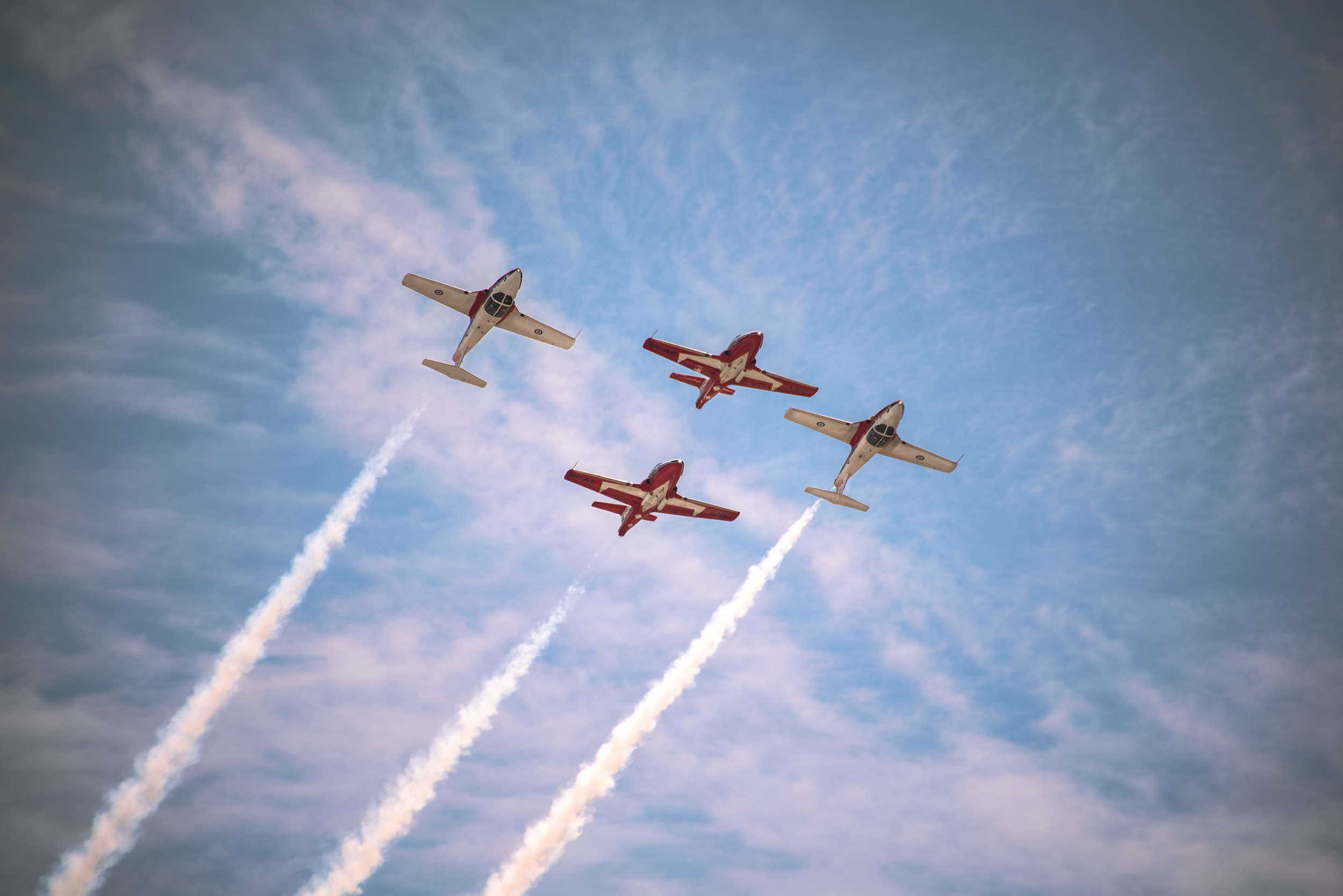 Snowbirds 2 up 2 down - Print.jpg