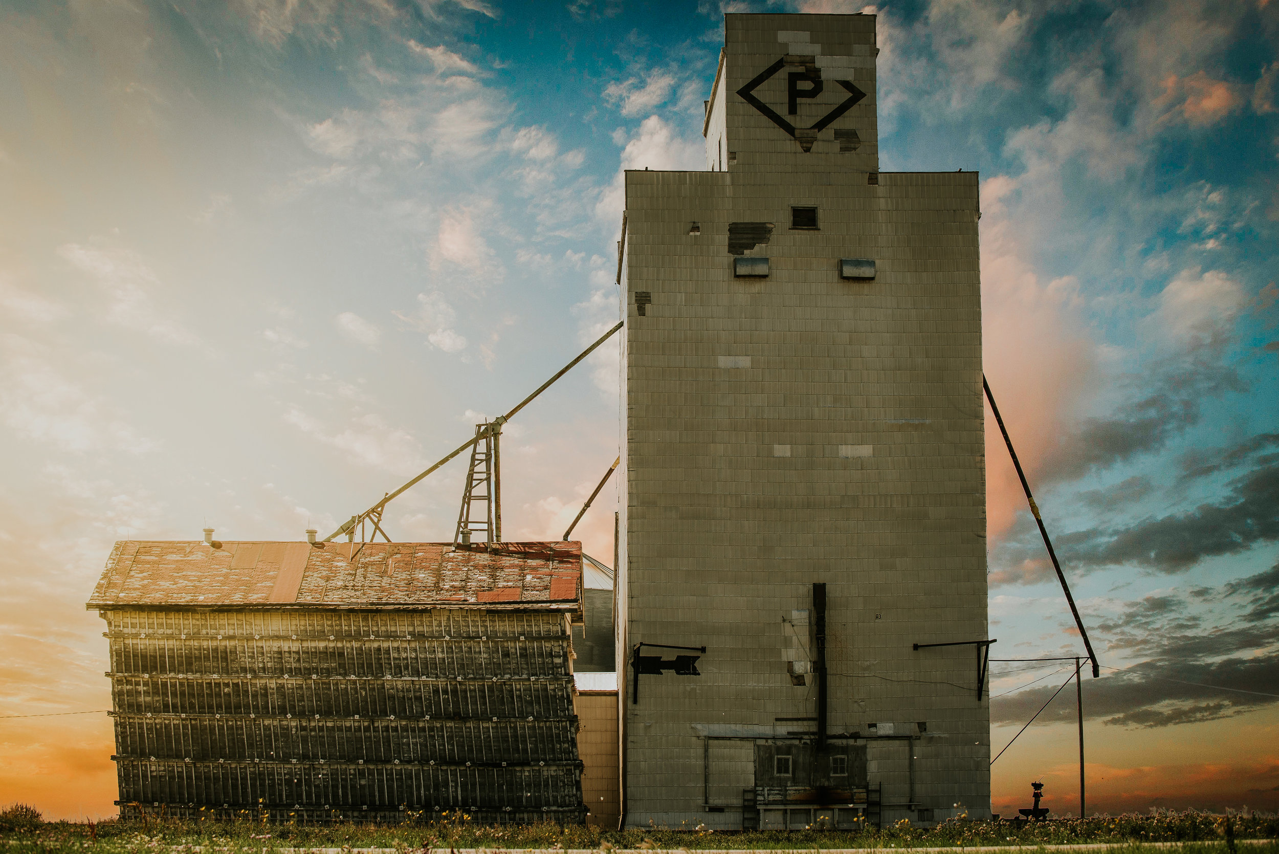 Grains P - Print.jpg