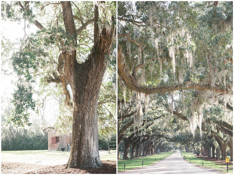 Jessica K Feiden Photography-Charleston South Carolina Destination Photographer_0007.jpg