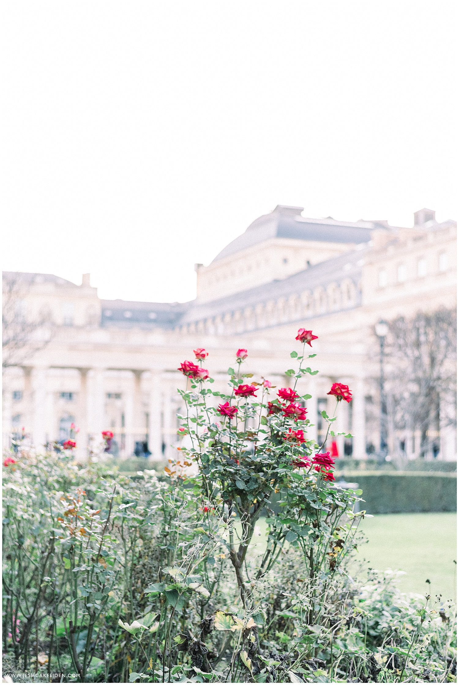 Jessica K Feiden Photography_Paris in November- Destination Paris Photographer_0004.jpg