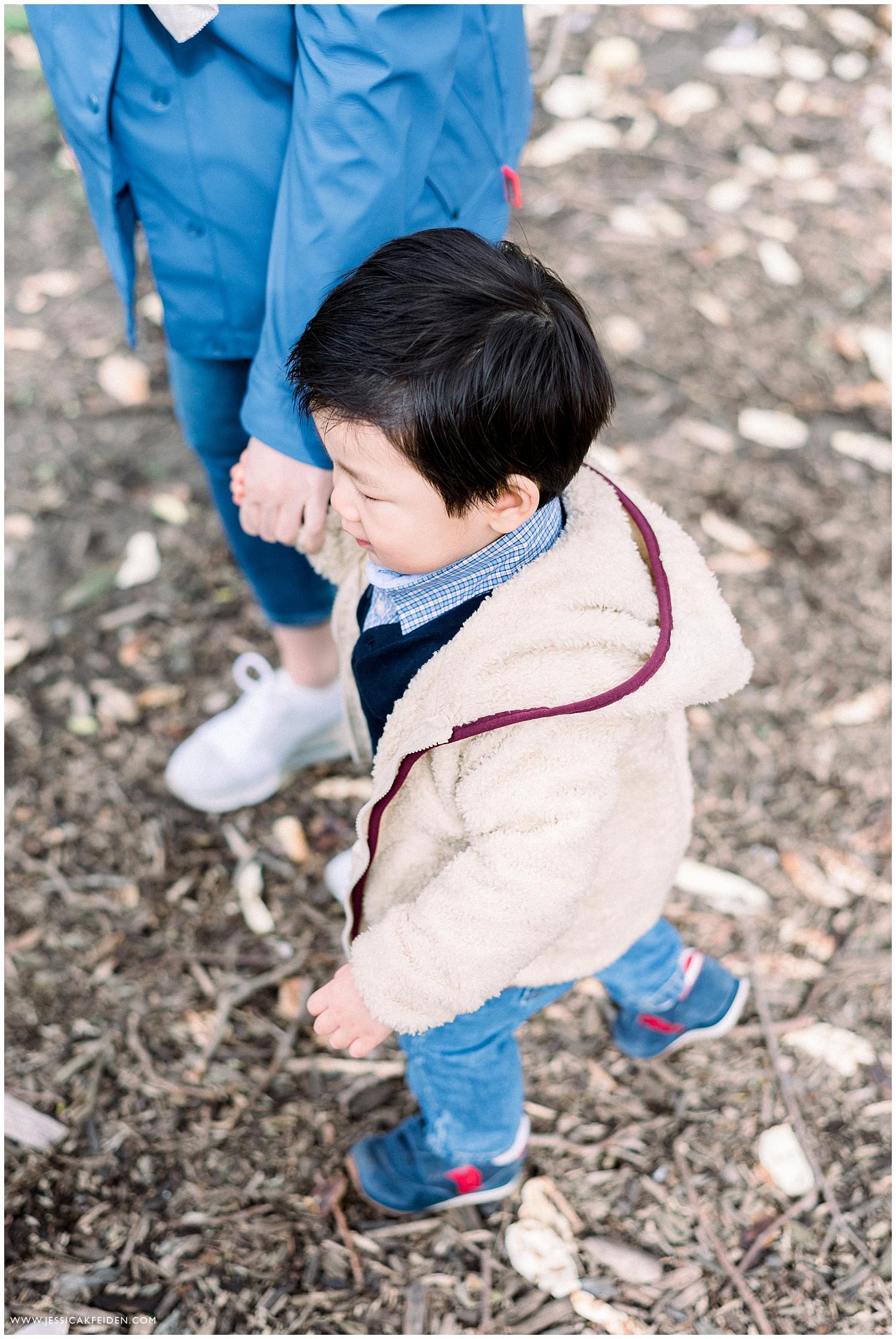 Jessica K Feiden Photography_Arnold Arboretum Spring Family Portrait Session Photographer_0002.jpg