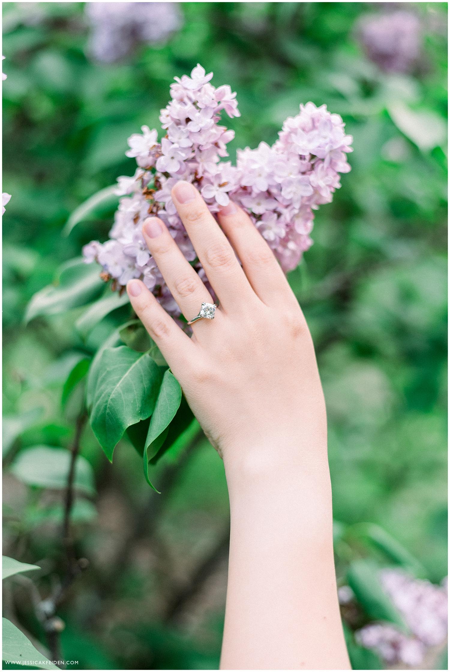 Jessica K Feiden Photography_Arnold Arboretum Boston Spring Engagement Session_0011.jpg