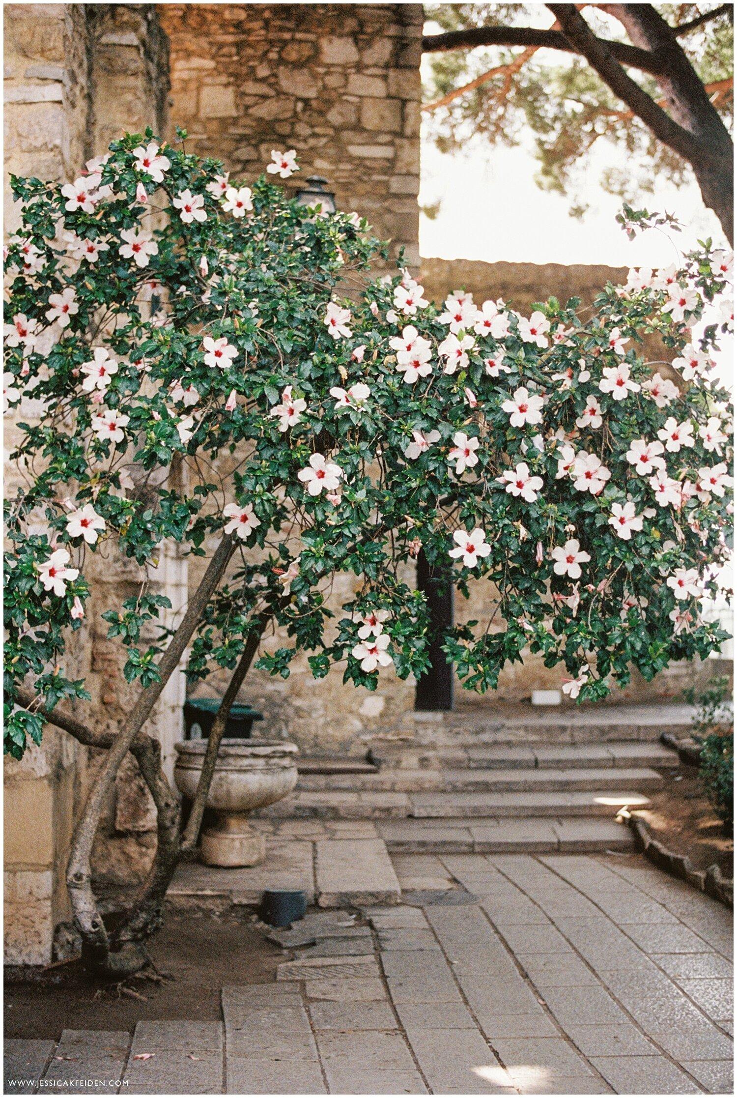 Jessica K Feiden Photography_Portugal Film Photographer_Portugal Travel Photographs_0019.jpg