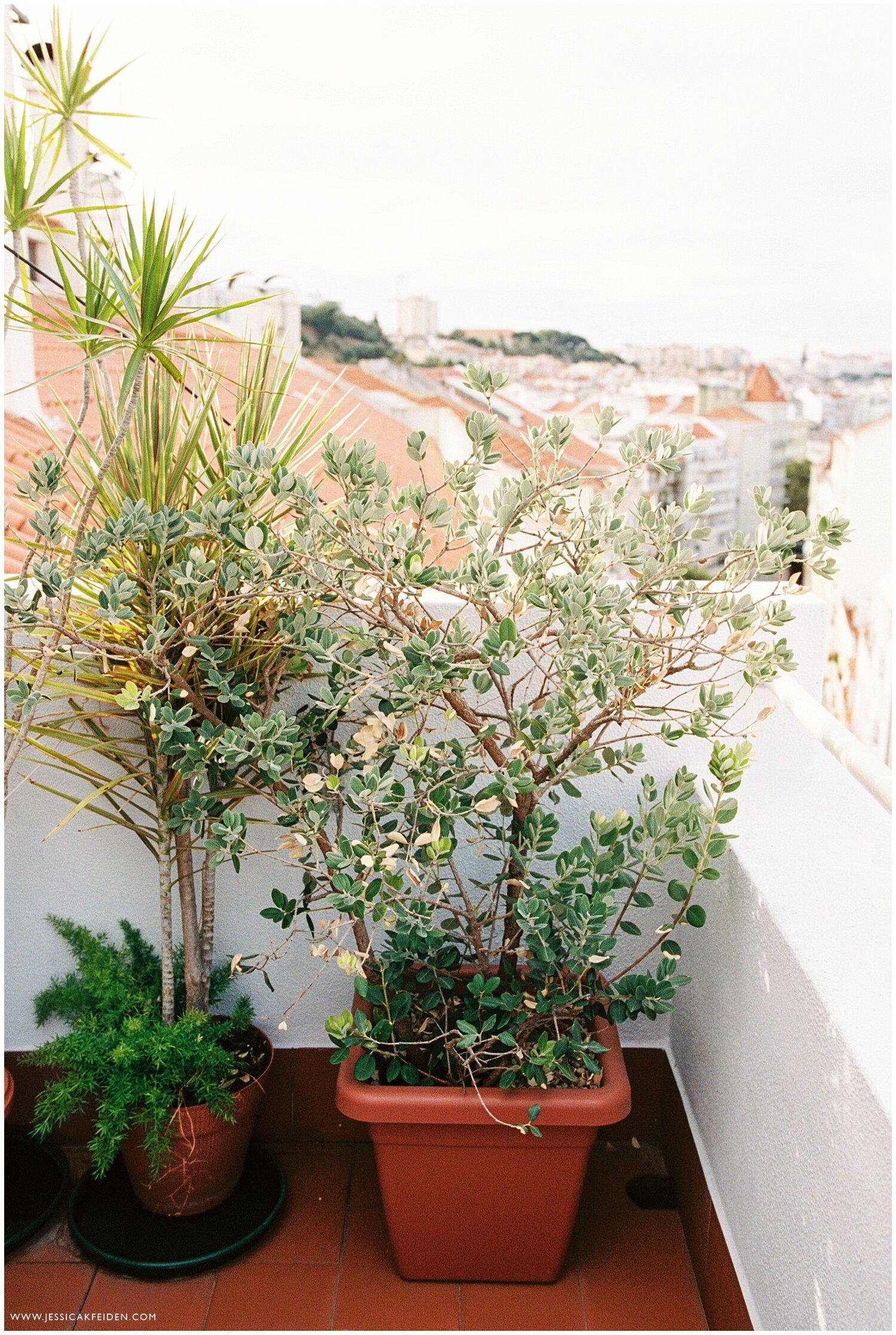 Jessica K Feiden Photography_Portugal Film Photographer_Portugal Travel Photographs_0031.jpg