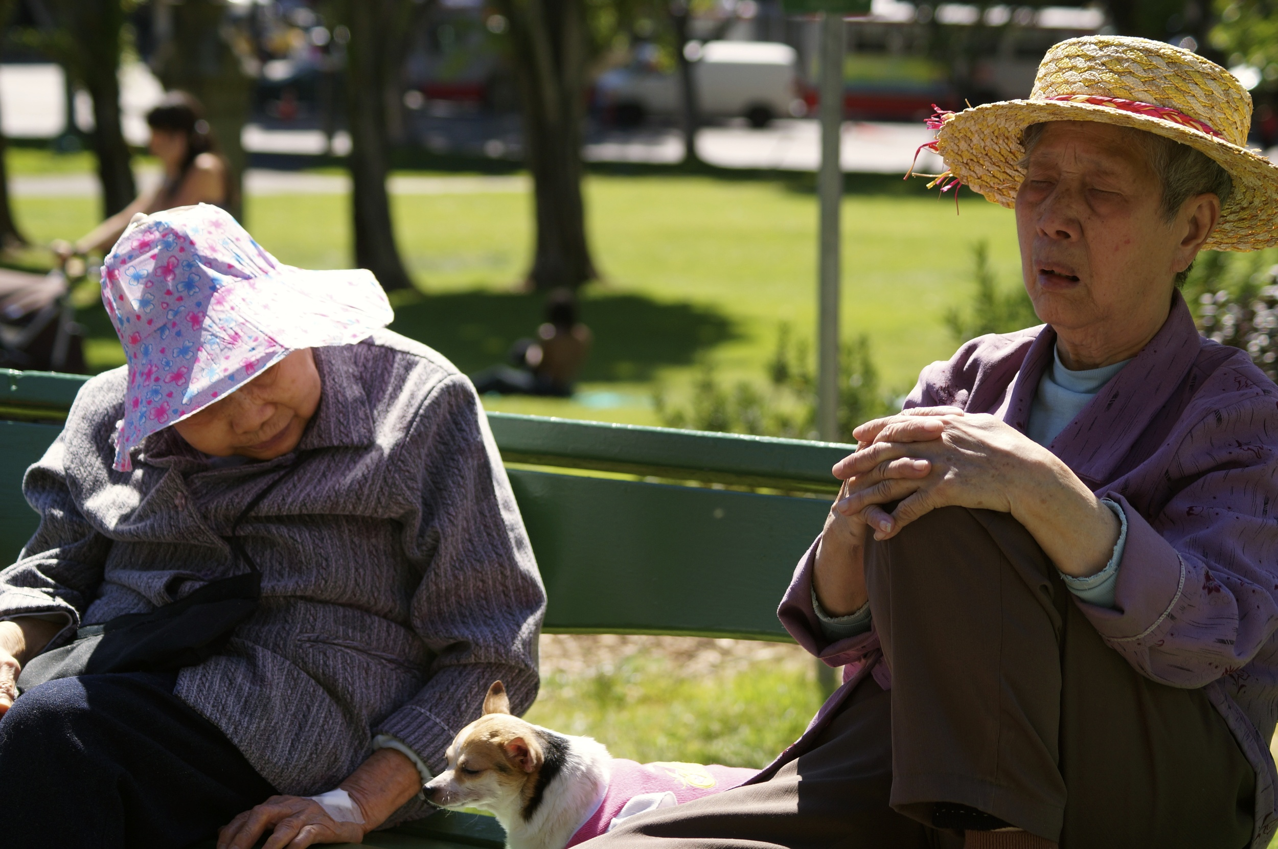 Napping couple, Washington Square Park, San Francisco