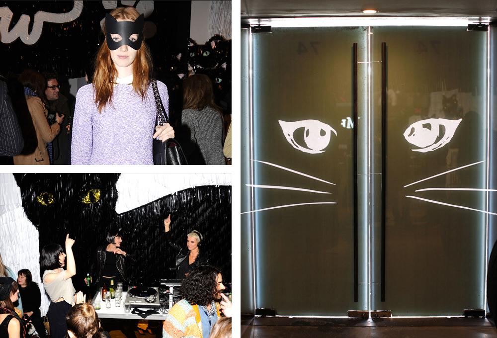 catparty.jpg