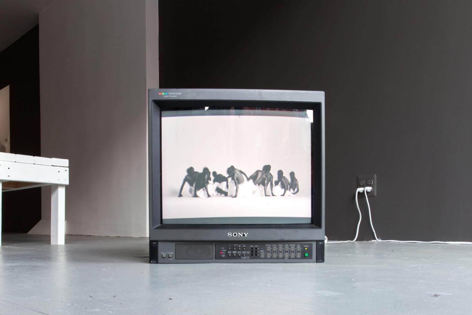 Mohau Modisakeng,  Ga bose gangwe , 2013, 1:36 Min (loop), Single channel video