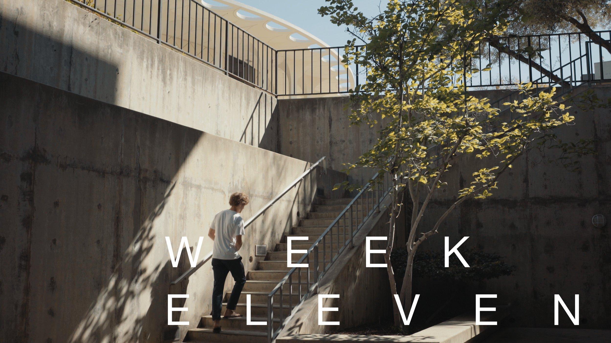 week 11.jpg