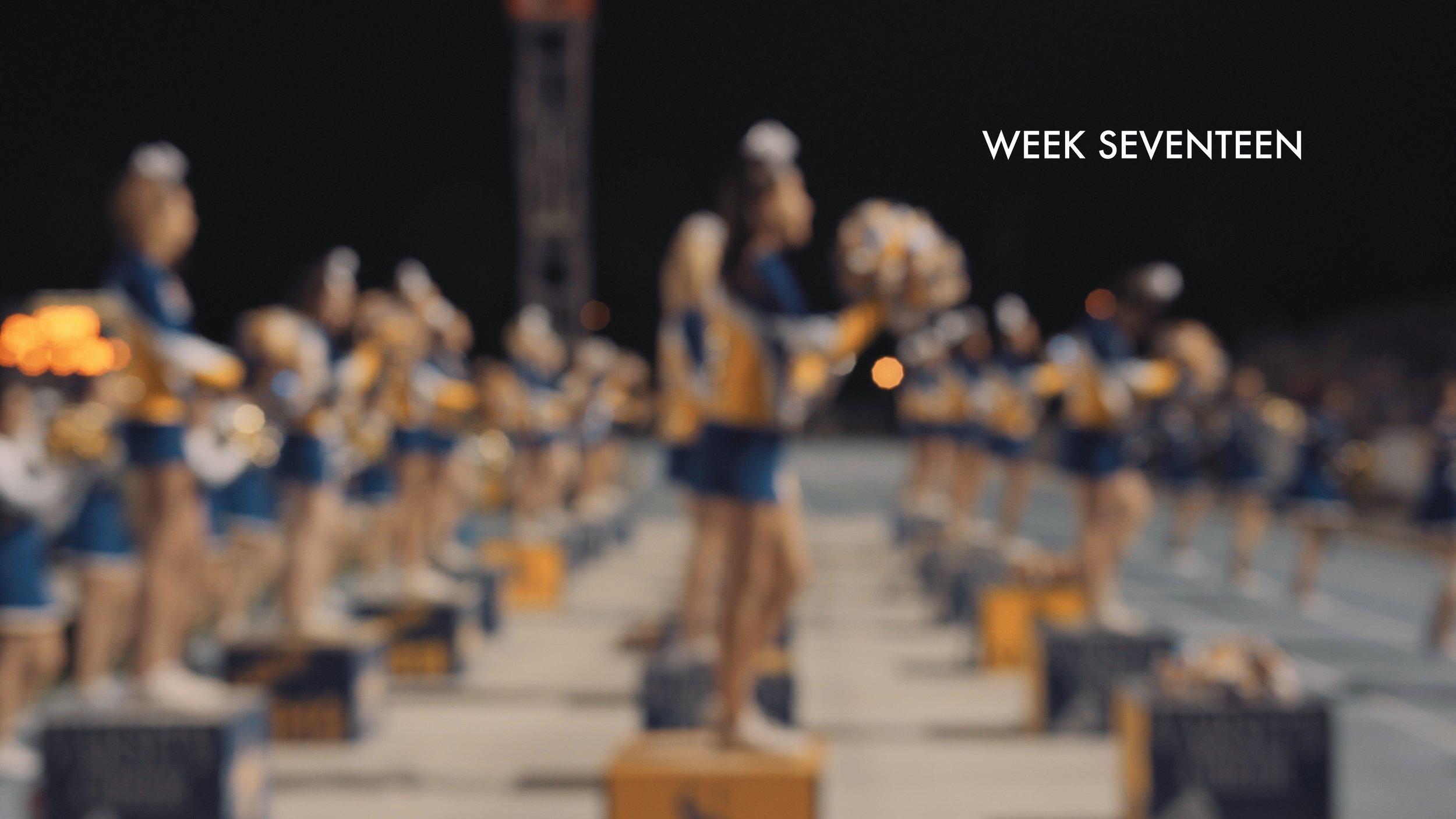 week 17.jpg