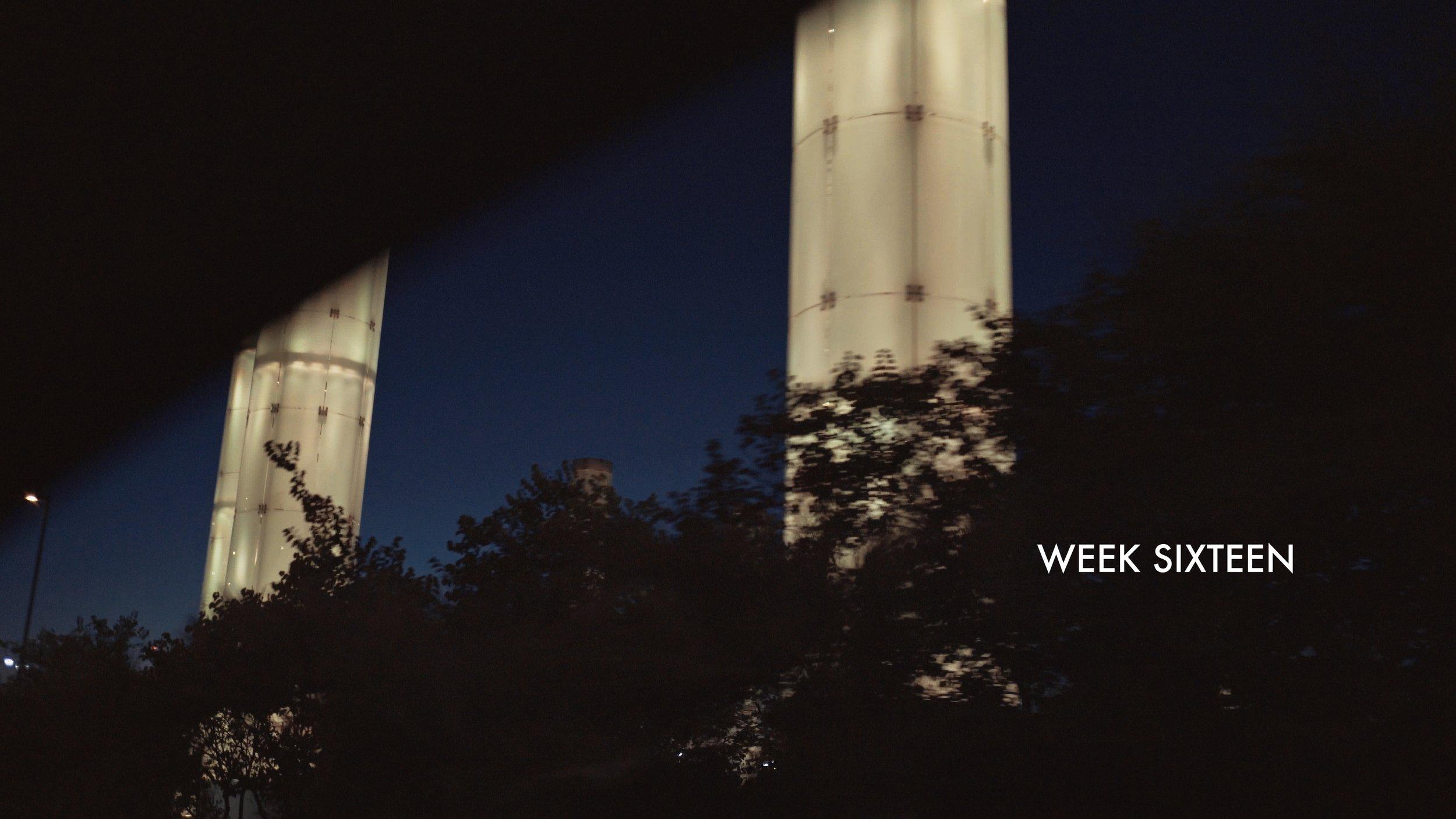week 16.jpg