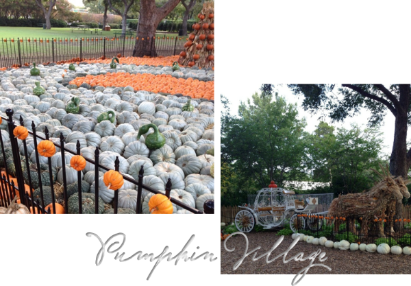 pumpkin village.png