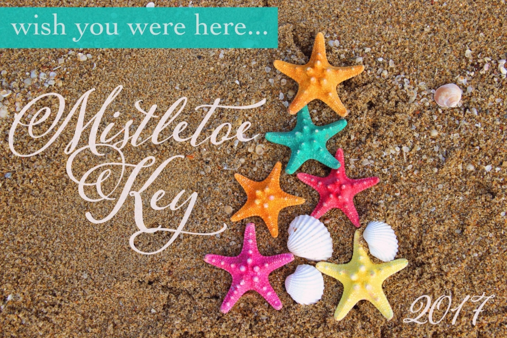 Mistletoe Key Postcard