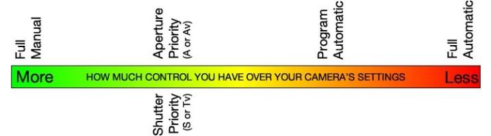 program-auto-diagram1.jpg