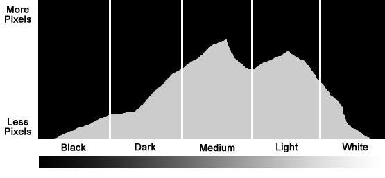 histogram pt 2.jpg