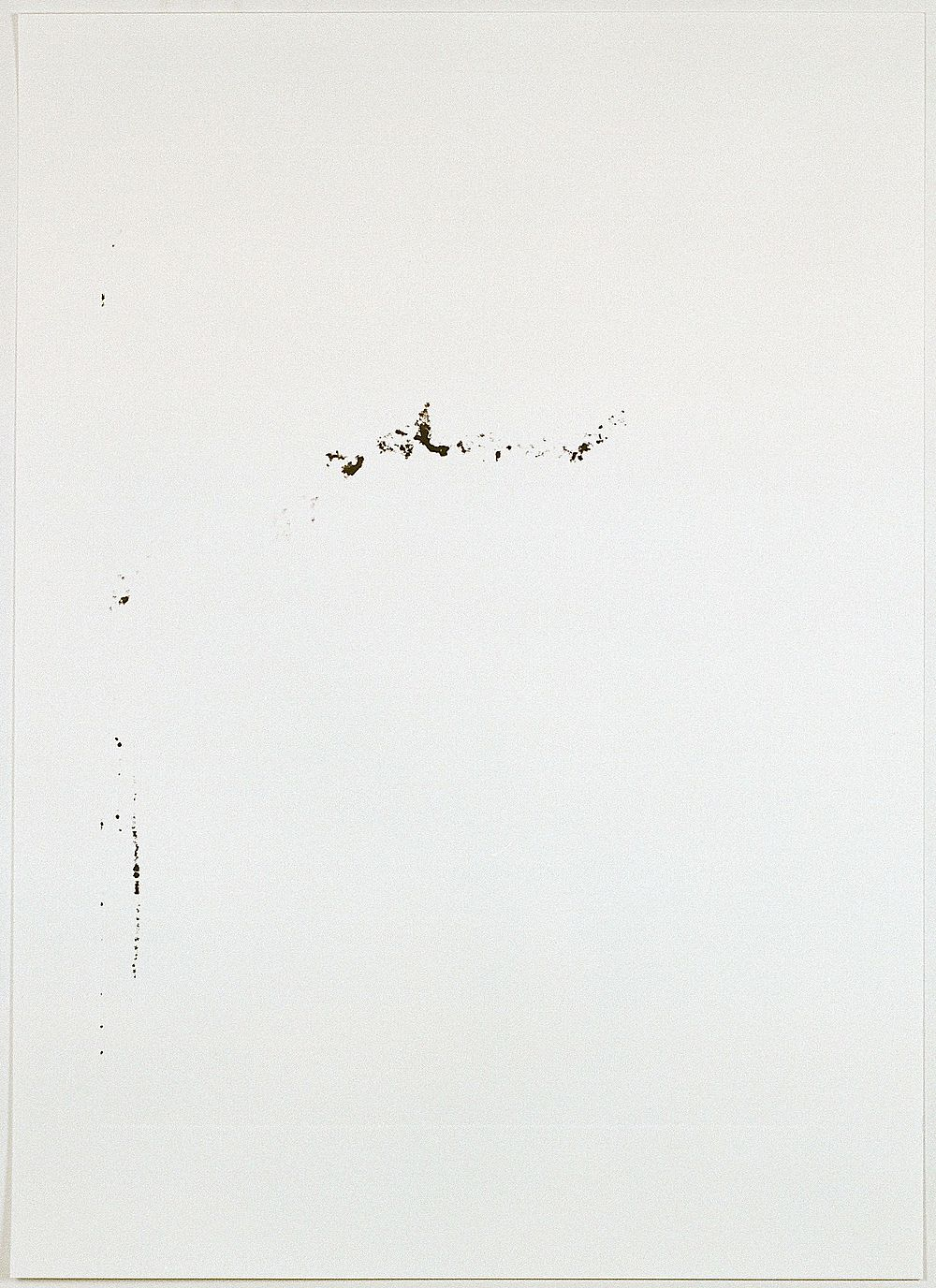 Notes For a Landscape , Monotype On Blotting Paper, 70x100cm, 2013