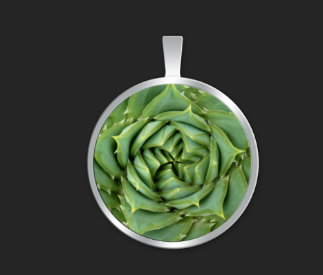 Succulent spiral small round $35