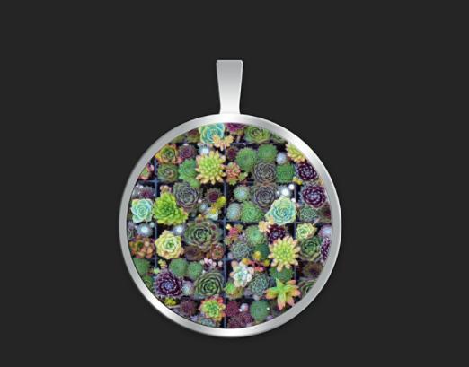 Succulent squares small round $35
