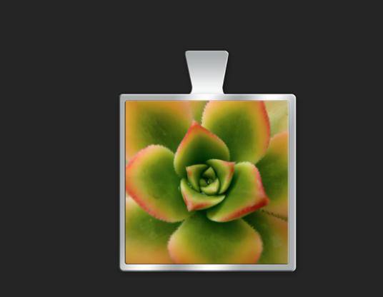 Orange succulent small square $35