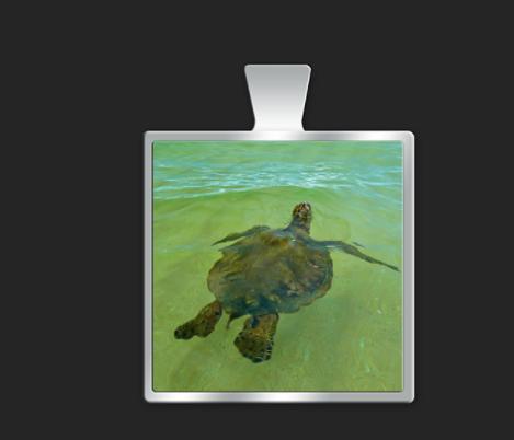 Turtle small square $35