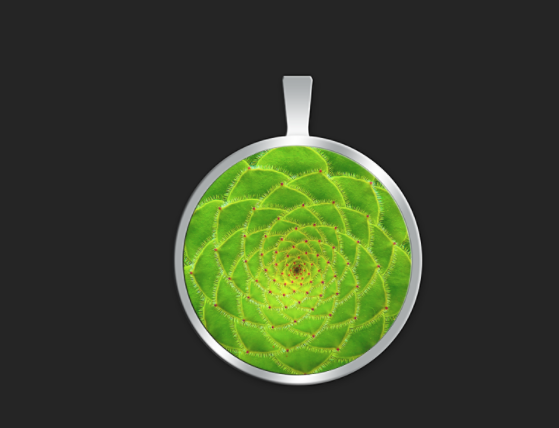 Succulent Mandala small round $35