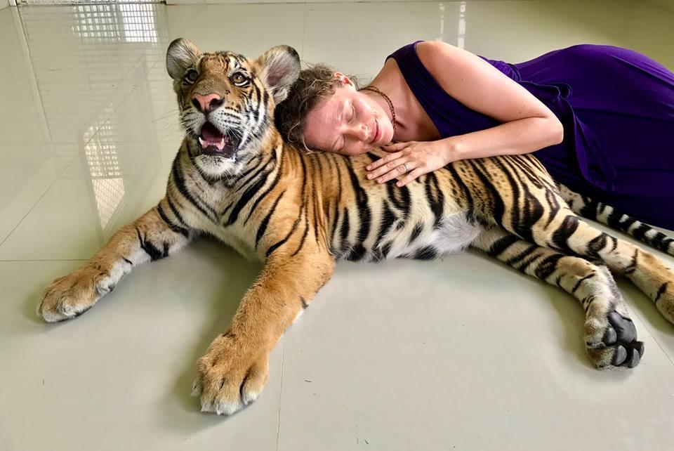 Thailand Tiger Sanctuary 2017