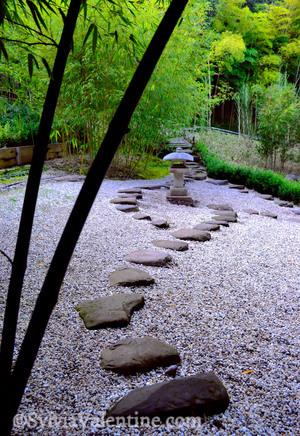 Zen Path (Hakone Gardens, CA)