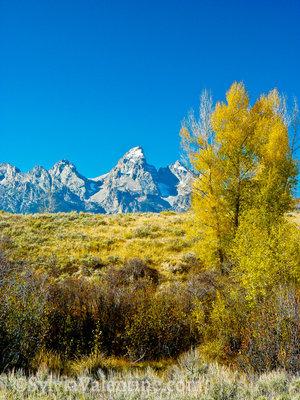 Tentons Fall, Wyoming