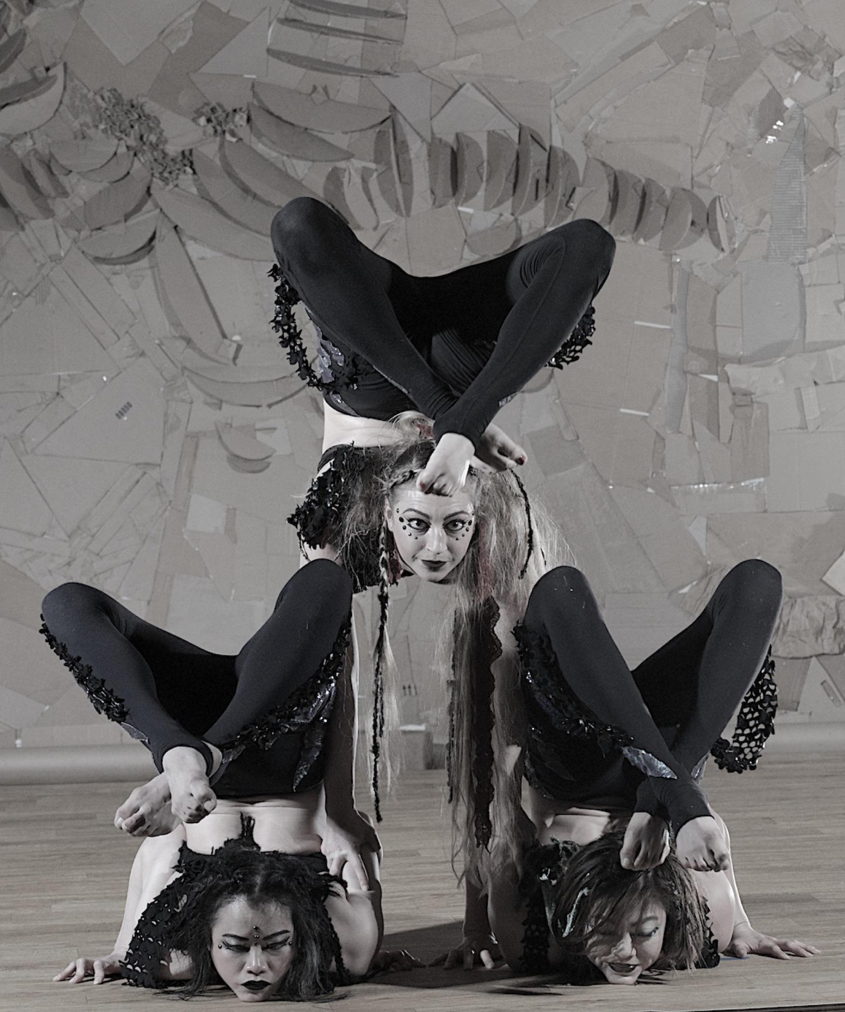aryn shelander group contortion.jpg