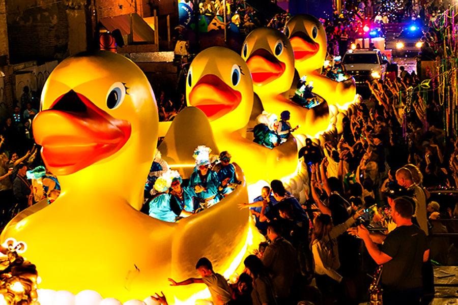 Muses Ducks 1.jpg