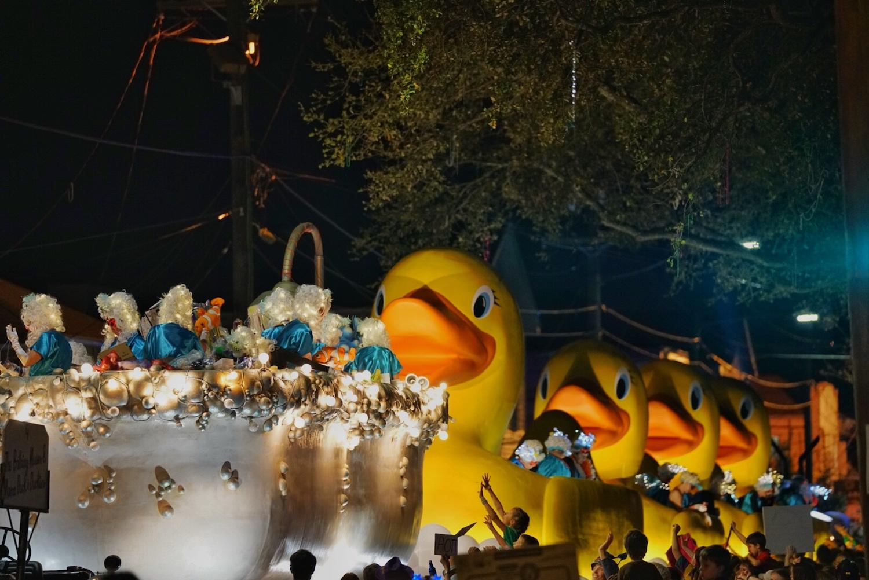 Muses Ducks.jpg