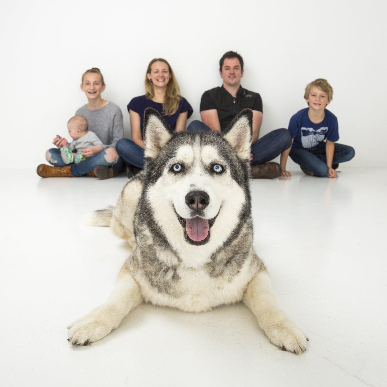 zanzo_portraits_hobart_photographer_tasmania_family_pets_dog_0001.jpg